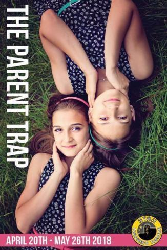 ParentTrap_400x600_fef289f7-e22d-421e-9fc6-55b44ad5cd1c_480x