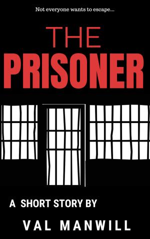 The Prisoner (1)